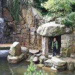 Ogród japoński strefą relaksu