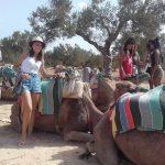 Moje wakacje w Tunezji :)