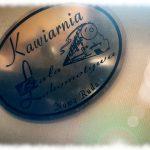 Baśniowa historia kawiarni Biała Lokomotywa w Nowej Rudzie  Czas Białej Lokomotywy w poezji