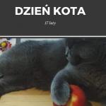17 luty Dzień kota